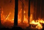 Incendio alle porte di Misilmeri