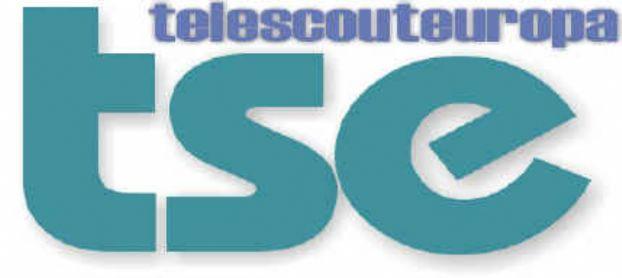 Consiglio Comunale: ci saranno le telecamere di TSE