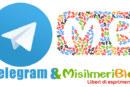 MisilmeriBlog da oggi anche su Telegram!