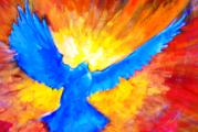 Veglia di Pentecoste alla Chiesa Nuova
