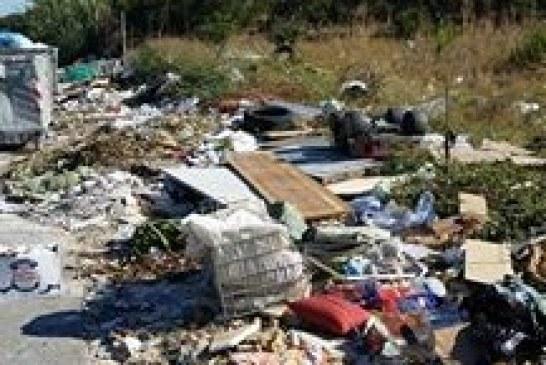 Dario Bua: Nessun intervento dell'amministrazione per un problema igienico-sanitario