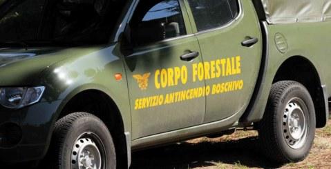 Tentavano di appiccare incendio sulla statale Palermo-Agrigento, denunciate 4 persone