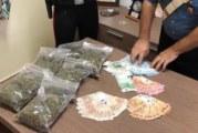 Arrestato giovane misilmerese per coltivazione di marjiuana