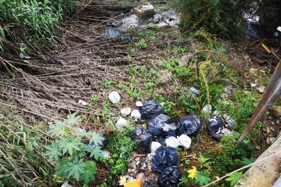 Multe e denunce per abbandono di rifiuti. Pugno duro del Comune